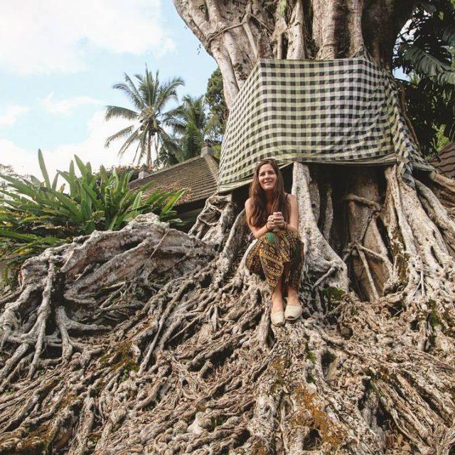 CA Ens encanten els arbres centenaris vestits de Bali hellip