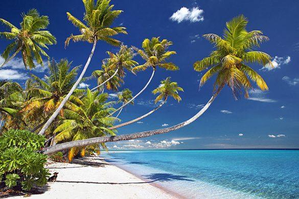 Fakarava_Hirifa_Beach