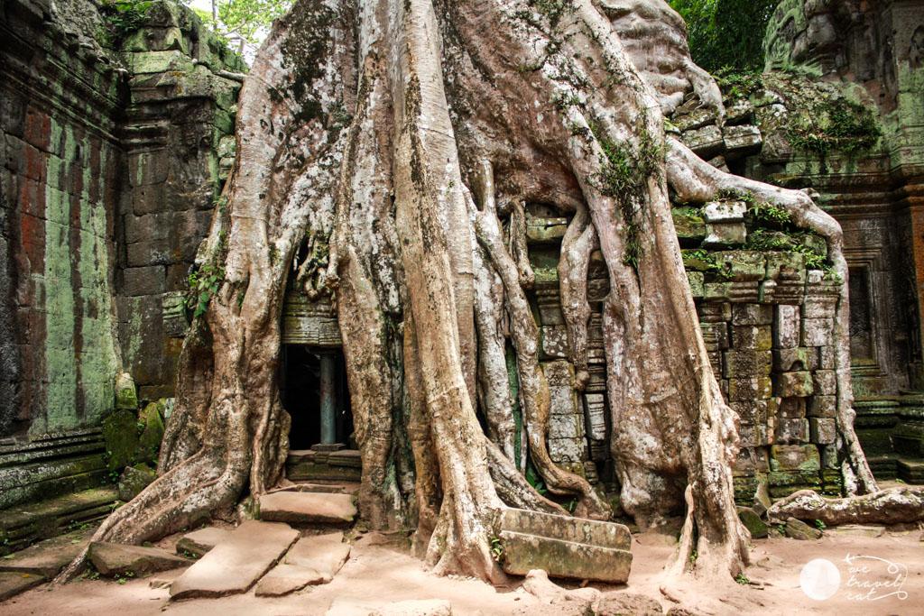 Cambodja-i-Vietnam-13