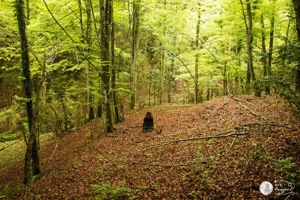 Bany de bosc a Vidrà - wetravel.cat